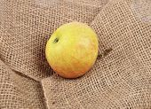 Apple On Jute