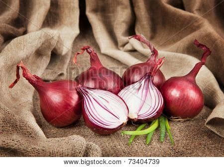 Ripe red onion on sackcloth