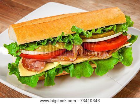 Tasty sandwich on the table