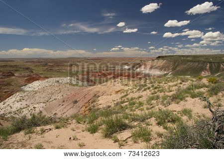 Painted Desert National Park In August - Arizonad