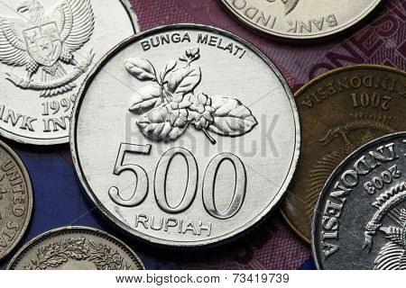 Coins of Indonesia. Jasmine flower depicted in the Indonesian 500 rupiah coin.