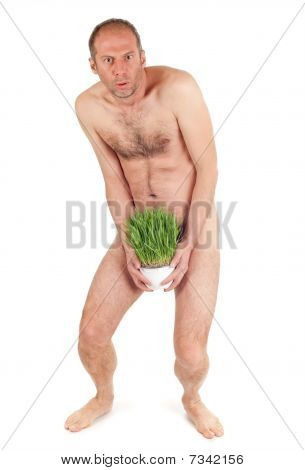 Nude Man And Grass