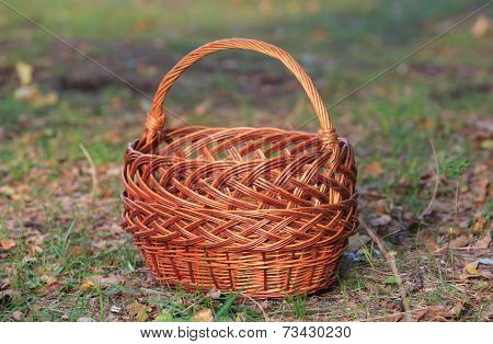 nice basket in autumn forest