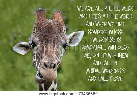 Giraffe quote