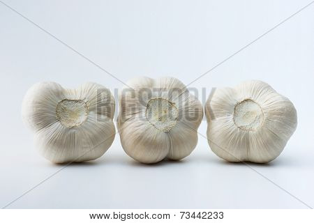Garlic ends isolated on natural white background.