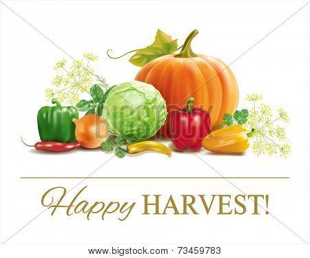 Harvest time vegetable composition on white. Vector eps 10.