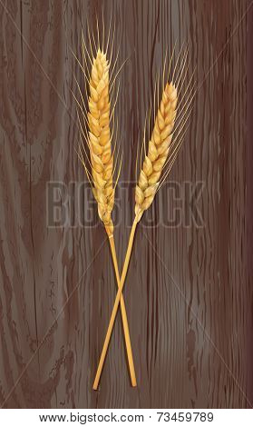 Wheat on wooden background. Vector eps 10.