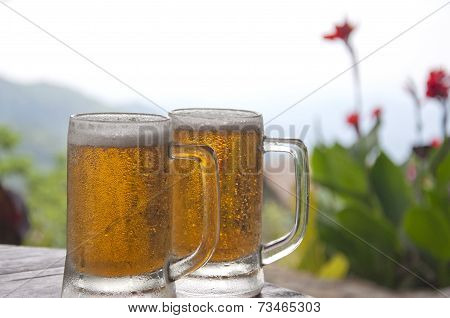 Two Mugs of Chilled Beer