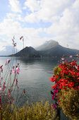 image of annecy  - Landscape of Annecy lake and flowers in Savoy France - JPG