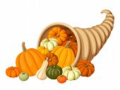 stock photo of gourds  - Vector autumn cornucopia with various pumpkins isolated on white - JPG