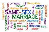 pic of same sex  - Same Sex Marriage word cloud on white background - JPG