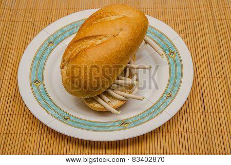 Fiber Optics Sandwich