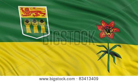 3D Saskatchewan  Flag