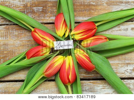 Gracias (which means thank you in Spanish) with red and yellow tulips on rustic wood