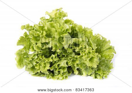 Salad Isolated On White