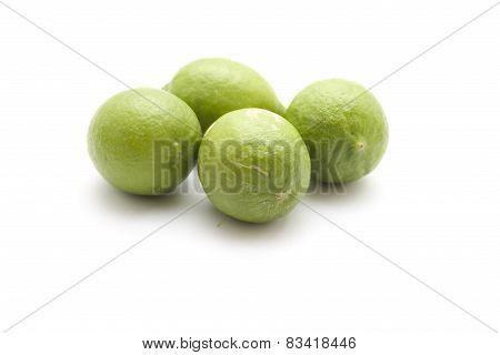 Fresh Green and Ripe Lemons