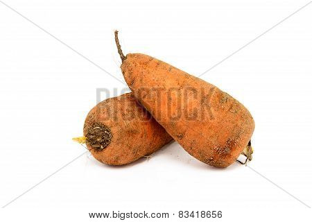 Two Dirty Carrots On A White Background