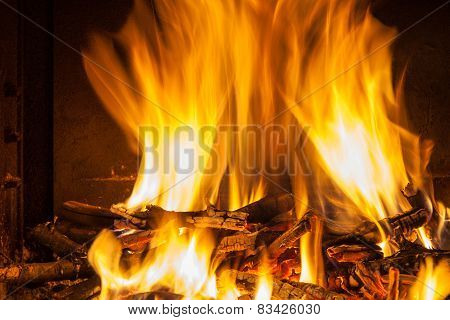 Burning Billets In Hot Stove