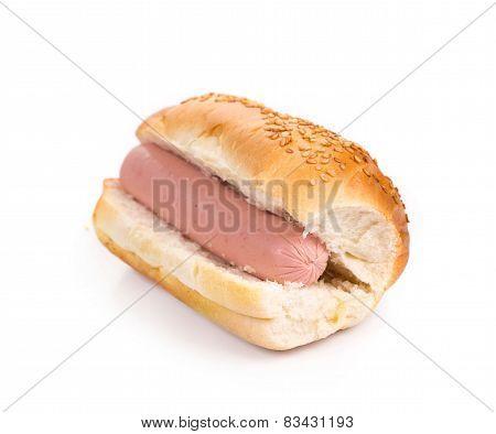 Tasty grilled hotdog