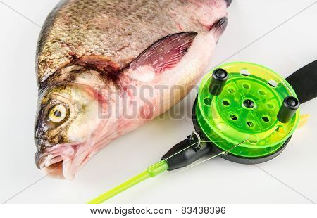 Bream And Rod Is Isolated On A White Background