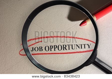 Job Opportunity Search