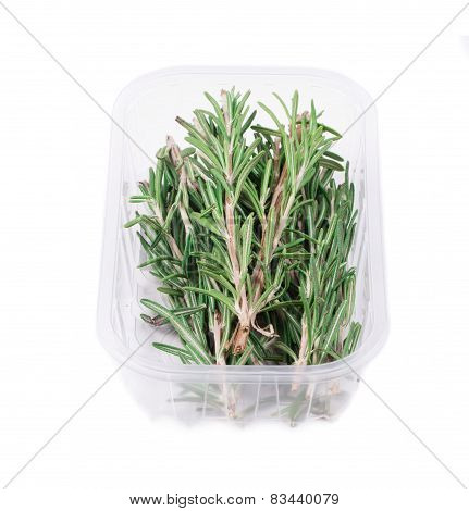 Fresh green rosemary