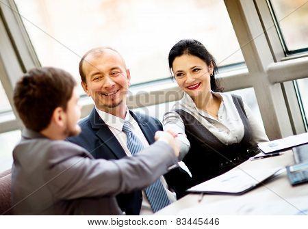 Mature businessman shaking hands