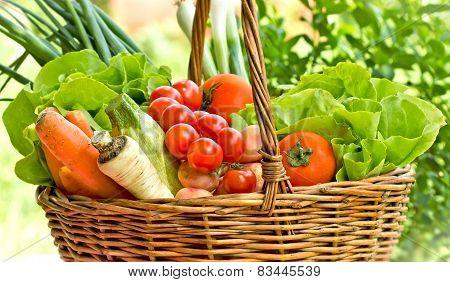 Organic vegetables in wicker basket