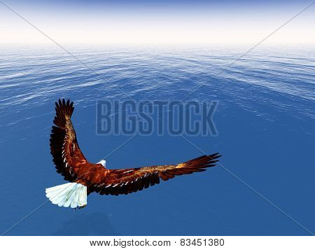 Eagle freedom - 3D render