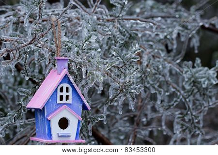 Birdhouse hanging on ice covered tree branche