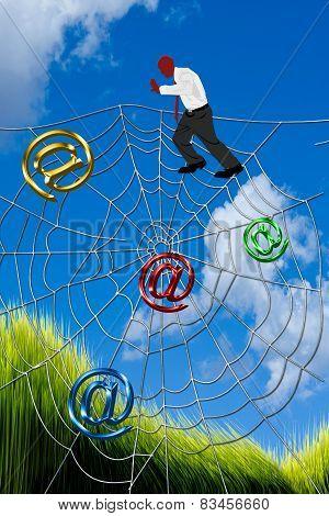 Climbing Spider Web.