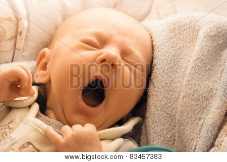 Little Newborn Baby Girl Lying