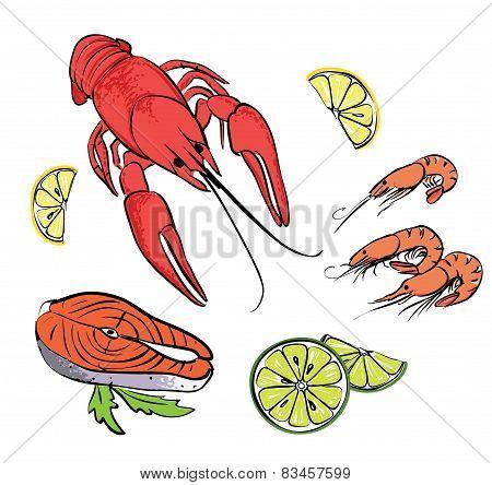 Hand drawn sea food set