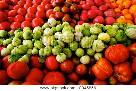 Fresh Tomatoes And Tomatillos