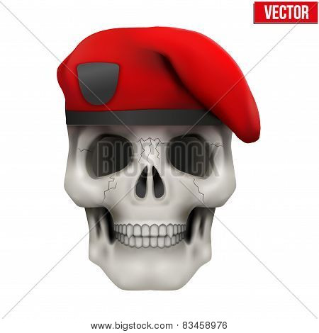 Human skull with Military maroon beret.