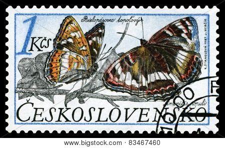 Vintage  Postage Stamp. Butterfly. Limenitis Populi.