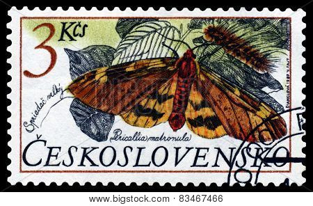 Vintage  Postage Stamp Butterfly.