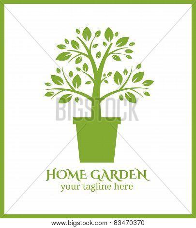 Home garden label, tree in pot logo