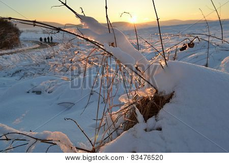 Sunset over winter landscape