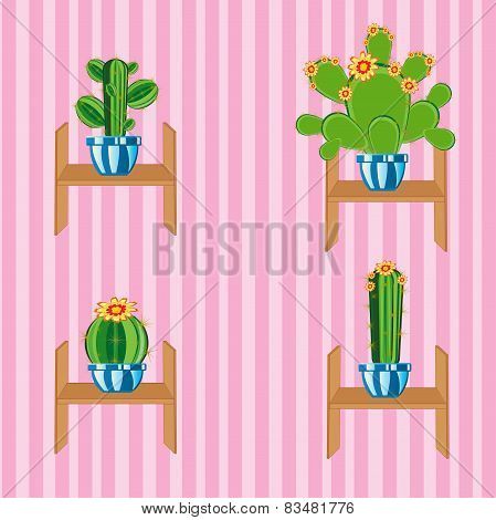 Cactuses on regiment