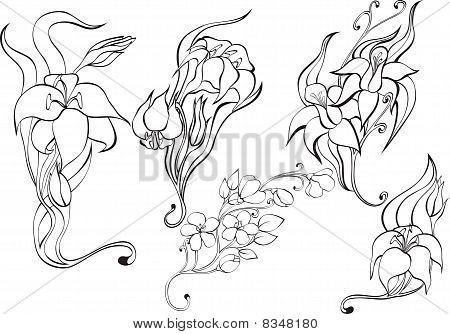 Set Black Flowers