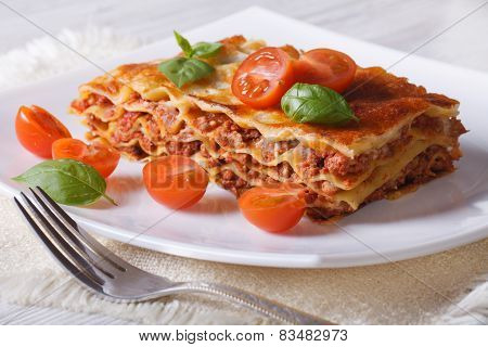 Lasagna With Basil And Tomatoes  On A White Plate. Horizontal