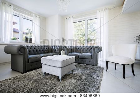 Leather Sofa In Bright Living Room