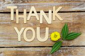 stock photo of thankful  - Thank you written with wooden letters and Santini flower on rustic wood - JPG