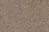 stock photo of buckwheat  - Buckwheat texture - JPG