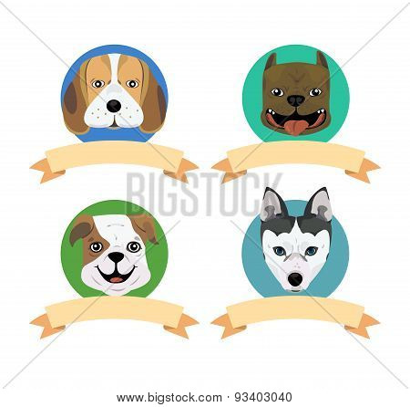 Dog Tag2
