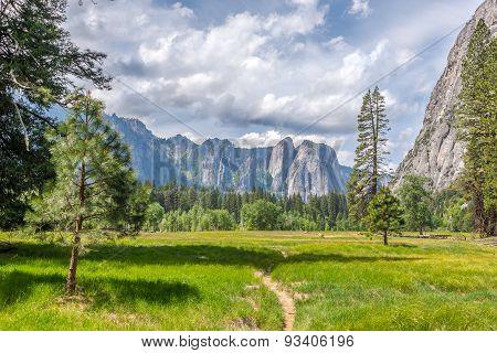 Meadows In Yosemite Valley