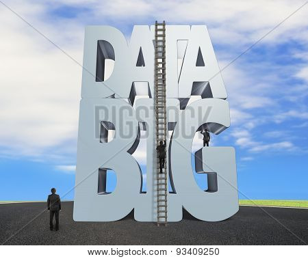 Big Data 3D Gray Word Wood Ladder With Business People
