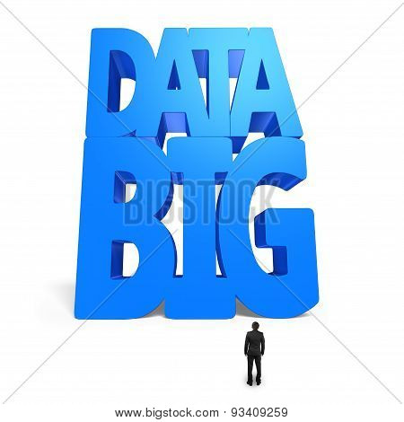 Big Data 3D Huge Blue Word With Small Businessman