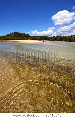Pond Coastline River  In The  Blue Madagascar  Nosy Iranja